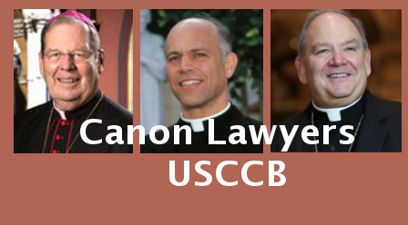 USCCB Canon Law Committee, Bai's letter